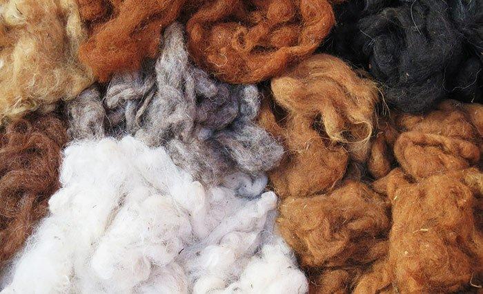 fibra di alpaca