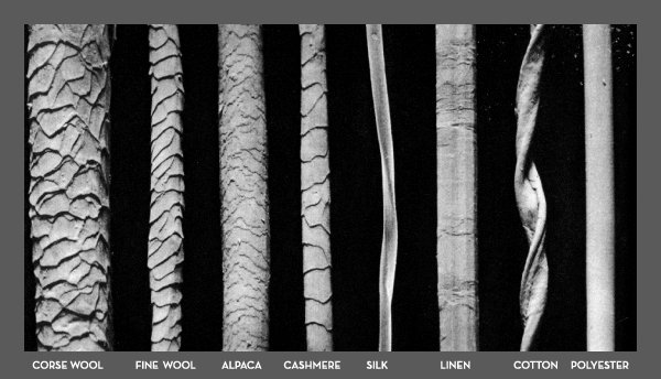 fibre al microscopio